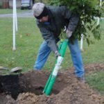Fred Fischer, tree-planting project chair
